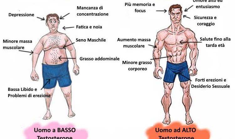 aumentare testosterone
