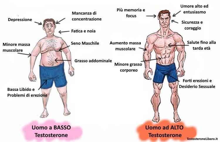 le banane causano grasso addominale e riducono il testosterone