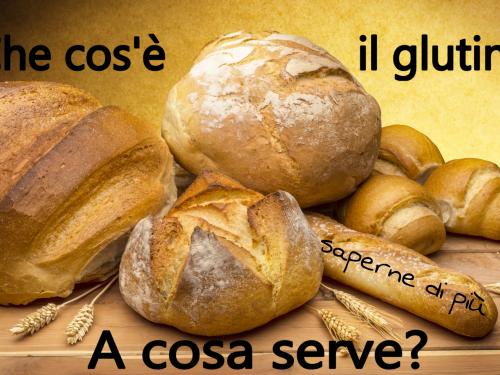 Che cos'è il glutine? A cosa serve? Fa male?