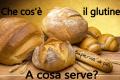 Che cos'è il glutine? A cosa serve?