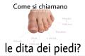 Come si chiamano le dita dei piedi?