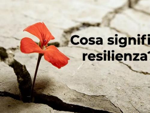 Cosa significa resilienza? Da dove deriva questo termine?