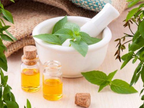 Cosa sono gli oli essenziali? Dove si trovano in natura?